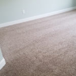 Day 143-Trim and Carpet