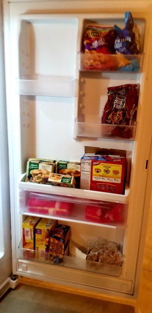Basement Freezer Door